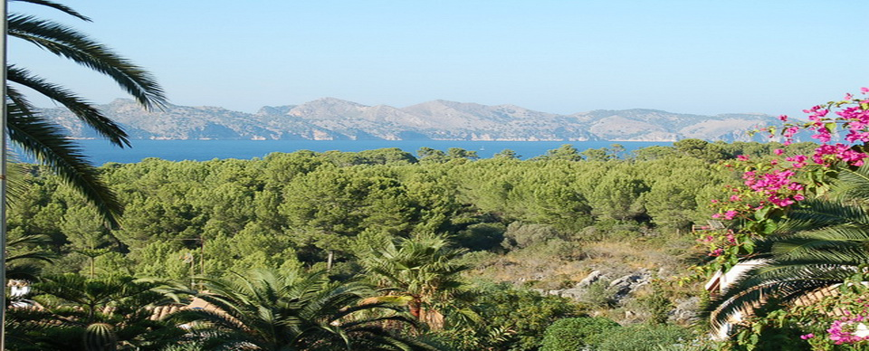 T-193 Impressive plot with views to the Pollensa bay